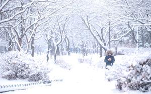 [뉴스핌 포토] 눈내린 굴포천 소경