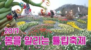 [봄 축제] 인생샷 찍을 수 있는 절호의 찬스!!...튤립축제로 모여라