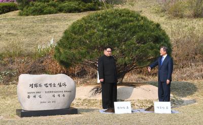 [사진] 문재인-김정은, 기념 식수 '평화와 변영을 심다'