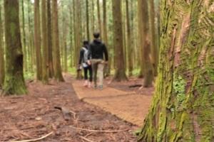 [영상] '숲속의 작은집' 소지섭, 박신혜가 되고 싶다면...'제주 사려니숲 가자'