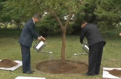 [영상] 文 대통령의 식수는 '모감주나무'... 그 뜻은?