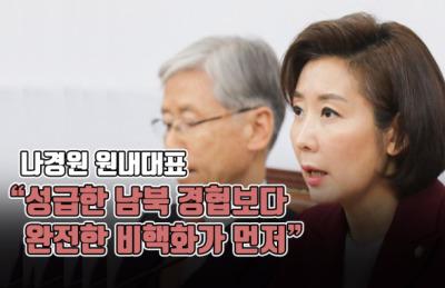 """[영상] 나경원 """"성급한 남북 경협보다 완전한 비핵화가 먼저"""""""