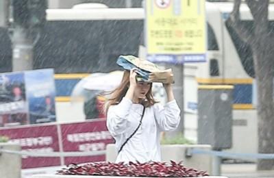 [사진] '비를 피하자'