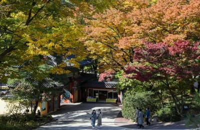 가을빛으로 물든 서울